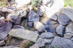Fuente como decoración del jardín de piedras fotografía de archivo