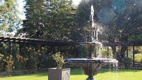 Fuente con gradas adornada del jardín almacen de video