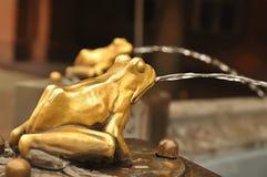 Fuente con la rana en Torun foto de archivo
