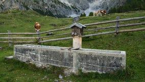 Fuente de agua en las montañas fotografía de archivo