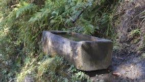 Fuente de agua Reino de Bhután Imagenes de archivo