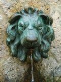 Fuente de la efigie del león Fotos de archivo libres de regalías