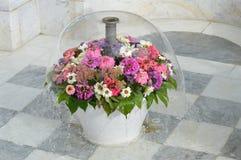 Fuente de la flor Foto de archivo