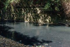 Fuente de la primavera del subsuelo en el río del sulfuro de hidrógeno Foto de archivo libre de regalías