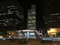 fuente de la riqueza en luz de la noche de Singapur Fotos de archivo