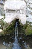 Fuente de piedra de la cara con agua detalladamente Fotos de archivo libres de regalías
