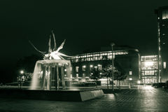 Fuente del cisne por noche Foto de archivo