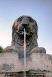 Fuente del león cerca de Palazzo Senatorio en la colina de Capitoline. Imagenes de archivo