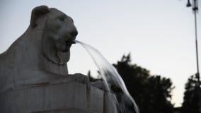 Fuente del león en Piazza del Popolo en Roma almacen de metraje de vídeo