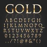 Fuente del oro del vector Fotografía de archivo