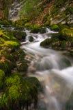 Fuente del río de Bastareny. Cadí, España. Imagenes de archivo