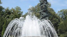 Fuente en el balneario de Vrnjacka, Serbia almacen de video
