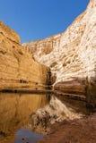 Fuente en el desierto del Néguev Fotos de archivo
