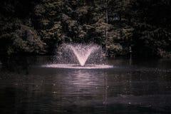 Fuente en el lago y Iris Gardens swan Fotografía de archivo
