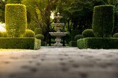 Fuente en el parque con luz del sol dura Fondo natural de la textura de la pared verde del arbusto con la tierra concentrada Foto de archivo libre de regalías