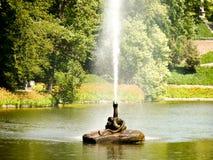 Fuente en el parque de naturaleza Fotografía de archivo libre de regalías