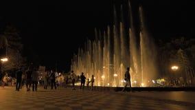 Fuente en la noche - Georgia almacen de video