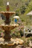 Fuente en rosaleda foto de archivo
