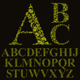 Fuente floral de las letras del estilo del vintage, alfabeto del vector Fotos de archivo libres de regalías