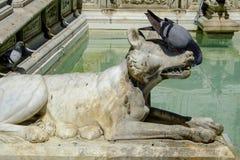 Fuente Gaia de Siena Toscana Italia Europa Fotografía de archivo libre de regalías