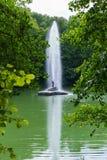 Fuente hermosa con una corriente transparente del agua que bate hasta los mismos tops de árboles que crecen en la orilla del Fotografía de archivo libre de regalías