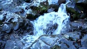 Fuente natural pura de agua potable almacen de metraje de vídeo