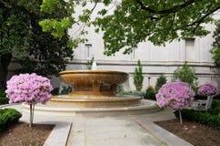 Fuente ornamental y paisaje con los árboles florecientes Imagen de archivo