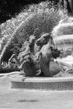 Fuente parisiense clásica Imágenes de archivo libres de regalías