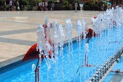 Fuente roja de los flamencos Fotografía de archivo