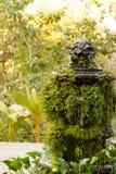 Fuente tropical cubierta de musgo Imágenes de archivo libres de regalías