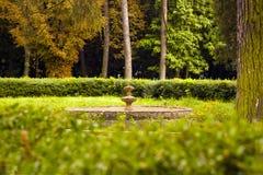 Fuente vieja en el patio trasero rodeado por las flores Imágenes de archivo libres de regalías