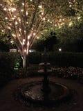 Fuente y árbol encendido Foto de archivo libre de regalías