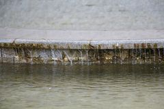 Fuente y chorros de agua en un soleado brillante Foto de archivo