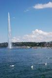 Fuente y cisnes de Ginebra Fotos de archivo