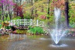 Fuente y puente del jardín botánico del parque de Sayen Fotos de archivo