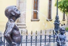 Fuenten De Los Ninos Miones i Guadalajara Arkivbilder