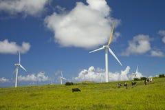 Fuentes de energía alternativas del viento Foto de archivo libre de regalías