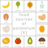 Fuentes de la comida de potasio ilustración del vector