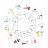 Fuentes de la comida del diagrama de vitaminas ilustración del vector