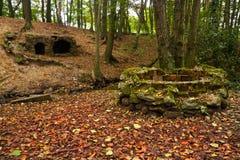 Fuentes de la cueva y de la piedra del bosque Fotos de archivo libres de regalías