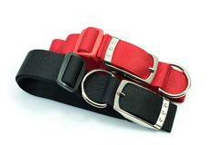 Fuentes del animal doméstico sobre los cuellos para el perro del rojo y del negro Fotografía de archivo libre de regalías