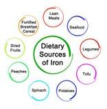 Fuentes dietéticas de hierro libre illustration