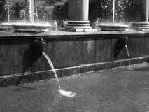 Fuentes en el parque de Petergof imagenes de archivo
