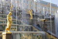 Fuentes magníficas de la cascada en el palacio de Peterhof, fuente Samson de St Petersburg Imagen de archivo libre de regalías