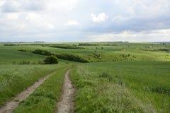 Fuera de la ciudad - paisaje rural - un campo Imagenes de archivo