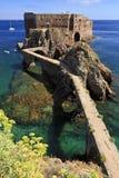 Fuerte de St John el Bautista en la isla de Berlenga, Portugal Imágenes de archivo libres de regalías