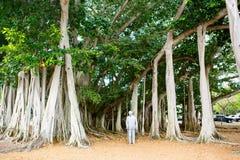 FUERTE MYERS, LA FLORIDA 15 DE ABRIL DE 2016: Fuerte Myers Florida, Thomas Edison fotos de archivo libres de regalías