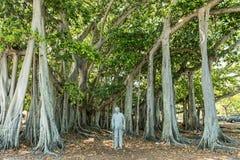 FUERTE MYERS, LA FLORIDA - 2 DE MAYO DE 2015: Edison y Ford Winter Estates Monument en parque imagen de archivo libre de regalías