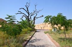 Fuerte Nakhargar en la India Jaipur una construcción histórica Fotografía de archivo libre de regalías