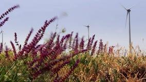 Fuerte viento y turbinas almacen de metraje de vídeo